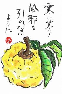 柚子1901